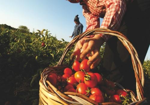 Presìdi Slow Food