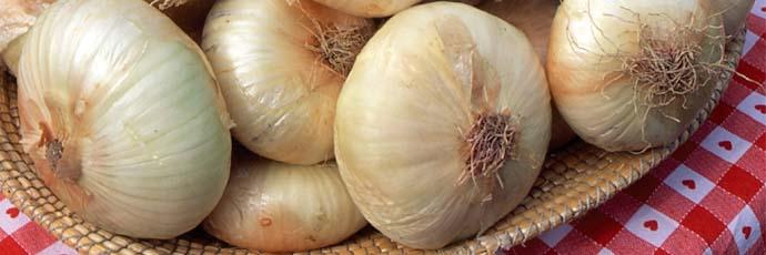Giarratana Onion