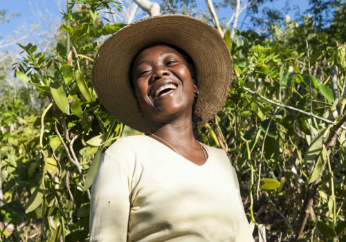 10.000 orti in Africa