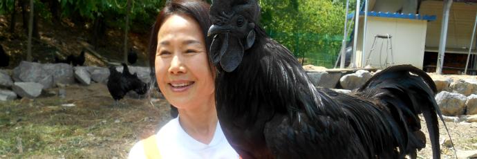 Black Ogye Chicken