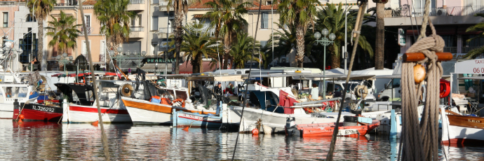Prud'homie del Mediterraneo