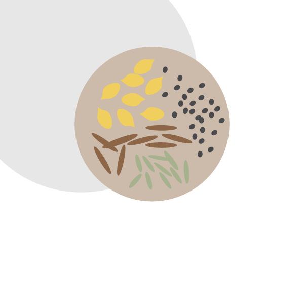 Conserva i semi