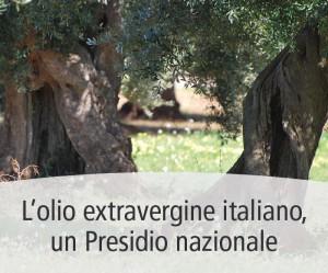 Il Presidio Slow Food dell'olio extravergine italiano