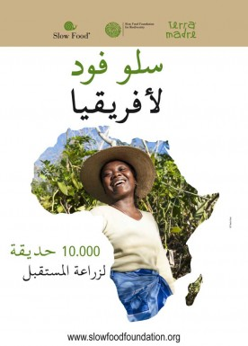 10.000 gardens in Africa  Poster arabic