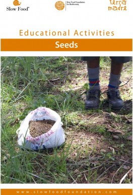 Educational activity  Seeds