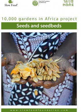 Practical fact sheet  Seeds and seedbeds