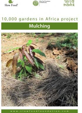 Practical fact sheet  Mulching