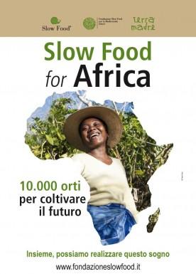 10.000 gardens in Africa  Poster italian