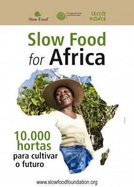 10.000 gardens in Africa  Poster portoguese