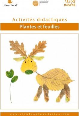 Activité didactique  Plantes et feuilles