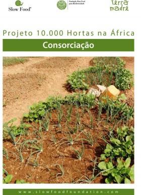 Ficha técnica  Consorciação