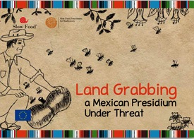 Land Grabbing. A Mexican Presidium Under Threat