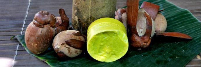 Tengkawang Nut Oil