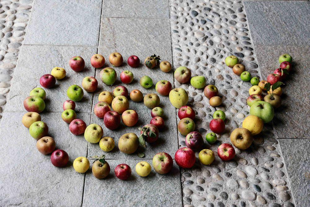 fondazioneslowfood.com - International Day For Biological Diversity: Endangered Foods