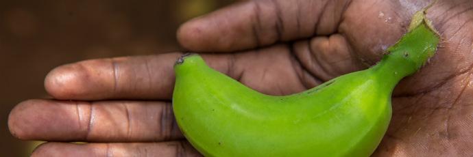 Ndiizi Banana