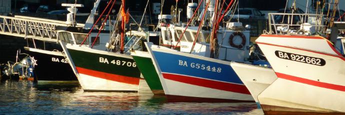 Saint-Jean-de-Luz Trotline-Fished Hake