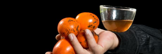 Meoksi Persimmon Vinegar