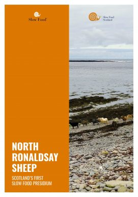 North Ronaldsday Sheep – Presidio Slow Food