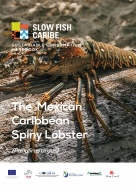The Mexican Caribbean Spiny Lobster – Sustainable Consumption Handbook