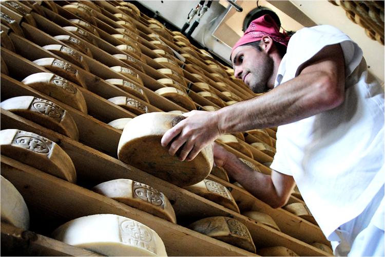 comunità formaggi