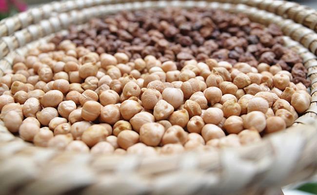 Gli itinerari di Slow Food in Azione – Gran Sasso, Castelli e Tratturi