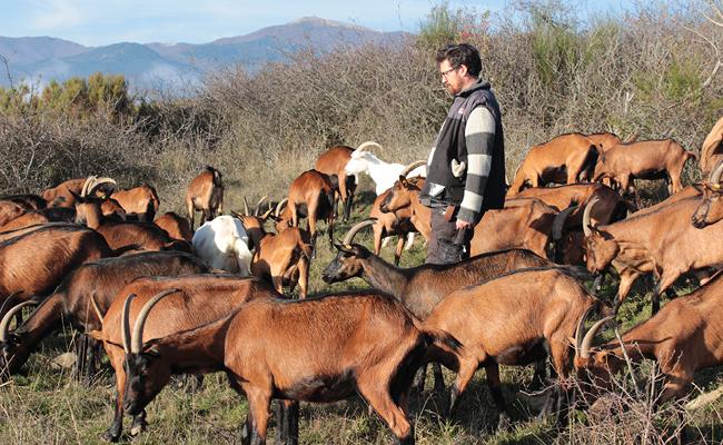Gli itinerari di Slow Food in Azione – Valdarno di Sopra