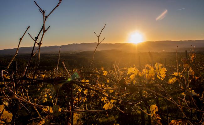 Valdarno di Sopra, tramonto