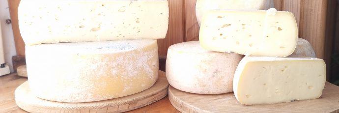 Sole, Rabbi, and Pejo Valleys Raw Milk Casolét