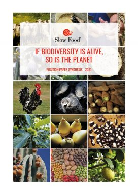 Biodiversity: Position Paper Synthesis (2021)