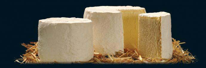 Raw Milk Farmhouse Chaource