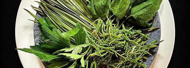 Erbe salate tradizionali