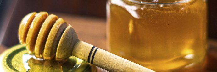 Jicote Barcino Honey