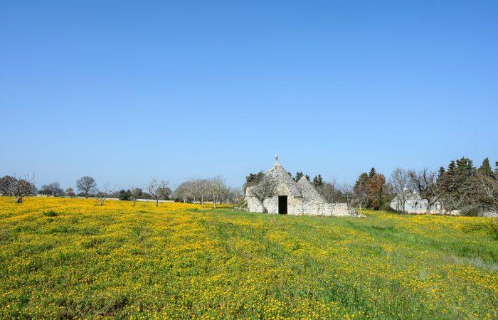 Dalla Valle d'Itria al cuore del Salento: vieni a 'viaggiare slow' in Puglia